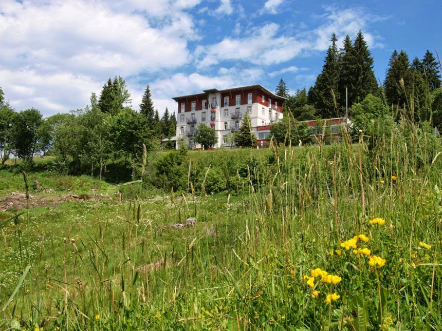 6 Tage Urlaub in Todtnau im Waldhotel am Notsch...