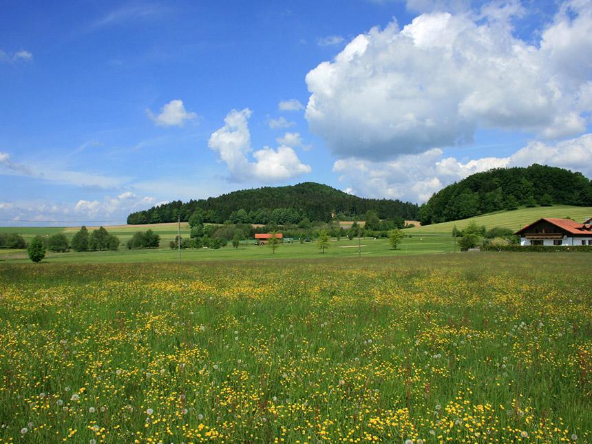 https://bilder.touridat.de/14507/5937/14507-5937-13-Bayerischerwald
