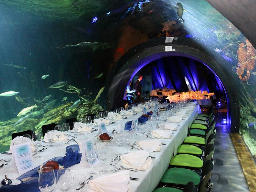 https://bilder.touridat.de/15431/5897/15431-5897-15-Restaurant
