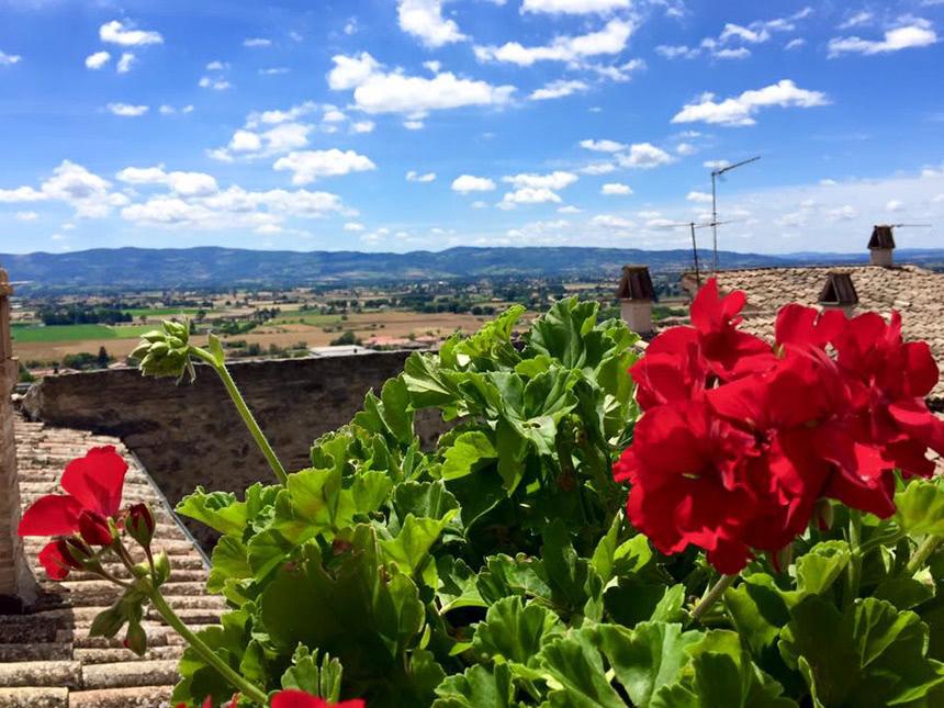 https://bilder.touridat.de/15899/7217/15899-7217-14-Blumen