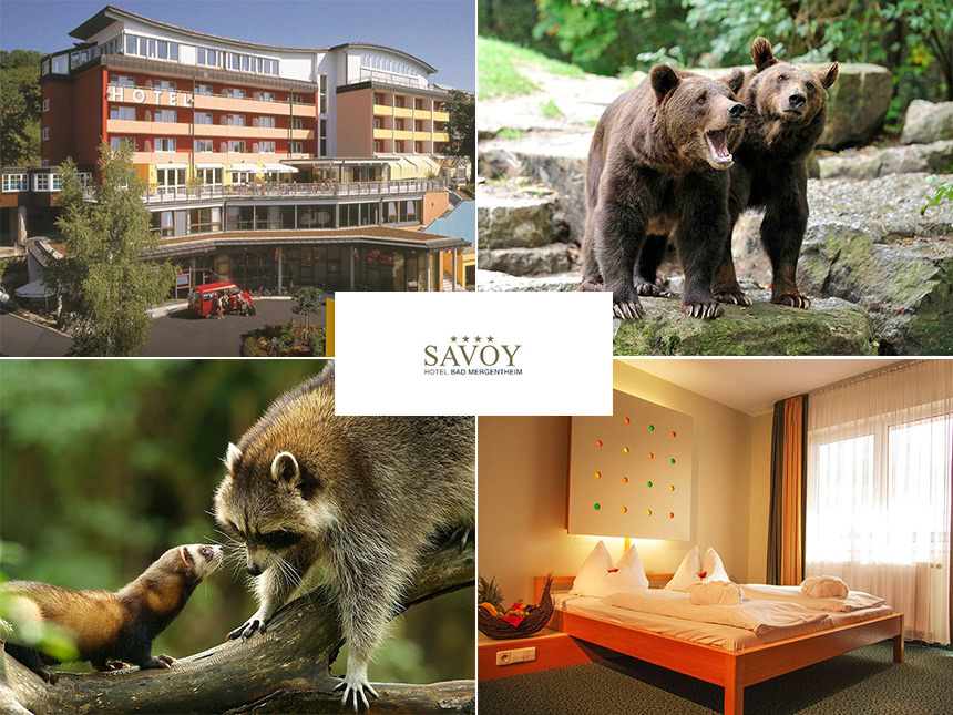 3 Tage Kurzurlaub in Franken im Savoy Hotel Bad...